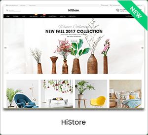HiStore - Multipurpose eCommerce & MarketPlace WordPress Theme