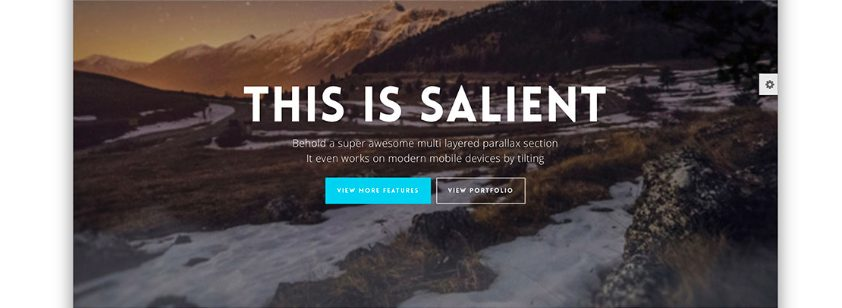 Salient Theme Custom Development with CSS, HTML, PHP, and JavaScript
