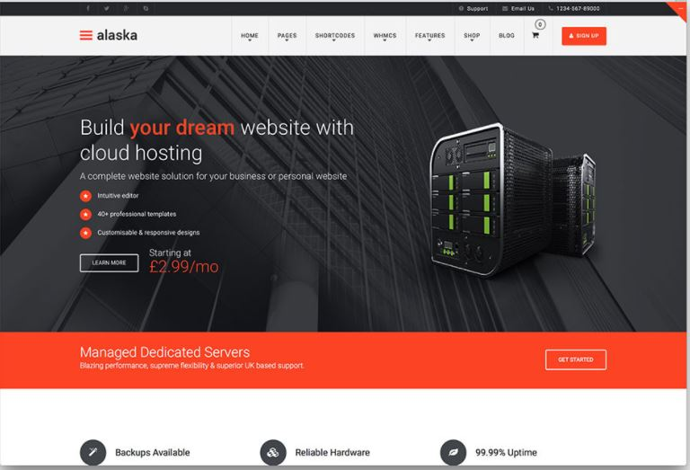 10 best hosting wordpress themes with full WHMCS manager Integration ...