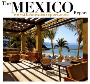 The Mexico Report official logo