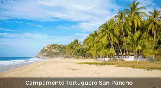 Campamento Tortuguero San Pancho