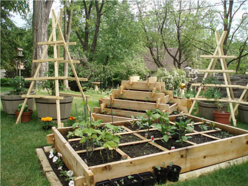 Amazing Trellis Design Photos Design Inspirations Luxury Vegetable