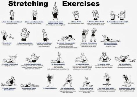 Stretch Exercises jpg
