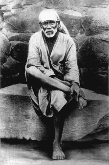 Sai-Original-sitting-on-stone
