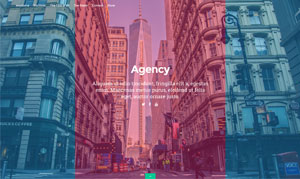 agency-page