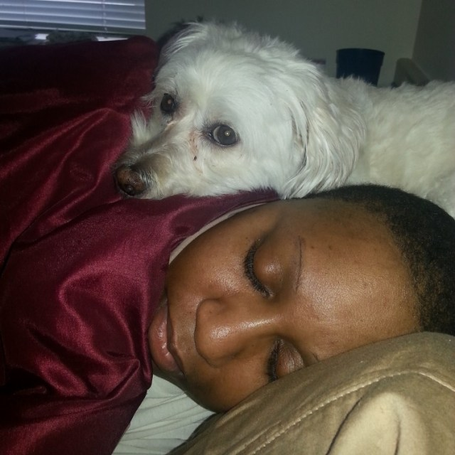 woman lying in bed with white dog