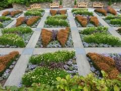 Butterfly quilt garden.