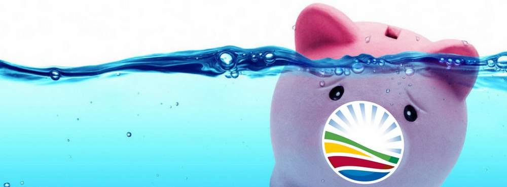 Democratic Alliance public funds piggy bank eleanore spies
