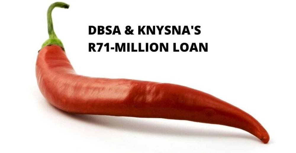 Development_Bank_of_Southern_Africa_(DBSA) Ben Mokheseng Sebolelo Matsoso