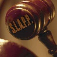 SLAPP strategic lawsuit against public participation south africa