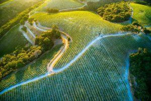 wine regions around Milan