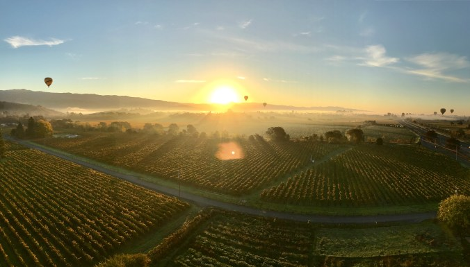 sunrise hot air balloon flight napa valley