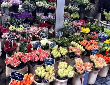 Flowers in Amsterdam, bloemenmarkt, floating flower market amsterdam
