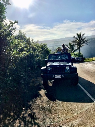 Hawaii on miles and points