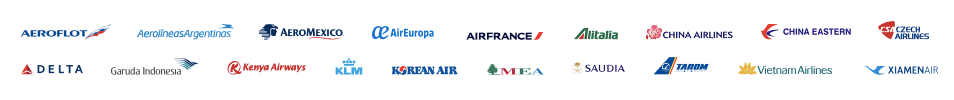 SkyTeam member airlines 2019