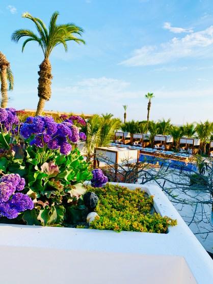Hotel Paracas, Marriott Bonvoy, Luxury Collection