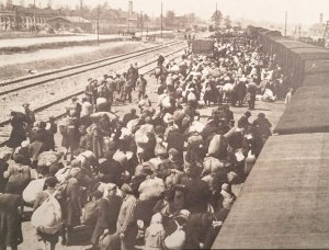 Picture on display at New York exhibit on Holocaust shows train delivering Jews and others to Auschwitz death camp in Poland. One million Jews were killed in gas chambers there.