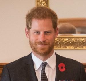 Catalogo dei MILLENNIAL #63: Il Principe Harry. La tua enciclopedia dei millennial