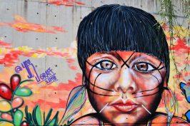 Indigena di Yes Graff, S. Mesa Paniagua e G. Maugeri