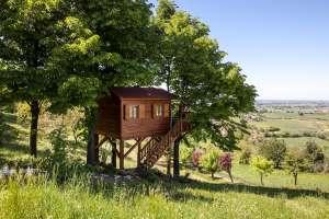 Tree house, alla scoperta delle più belle case sugli alberi italiane