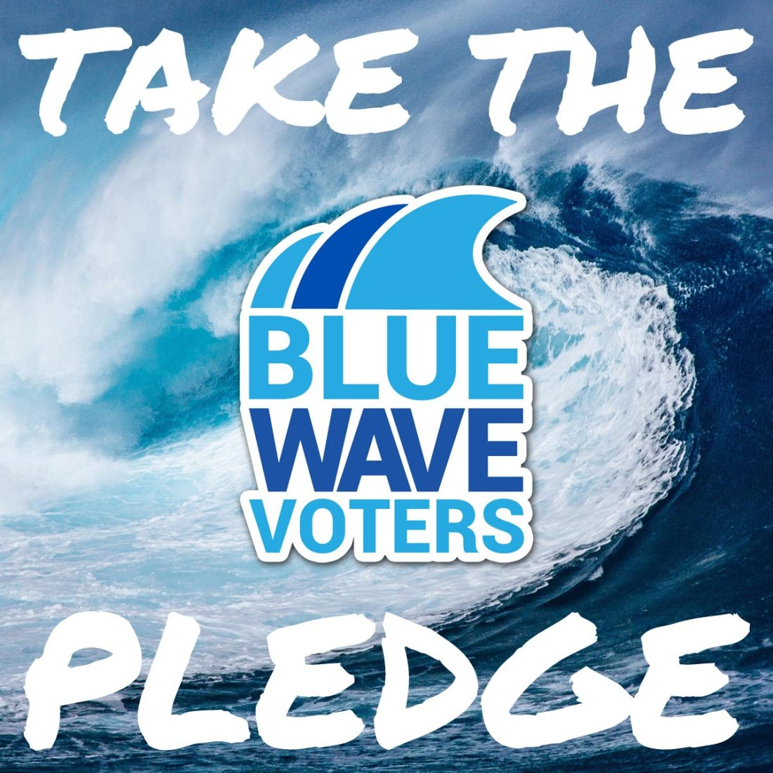 #BlueWave2018! Take the Blue Wave Pledge, and VOTE!