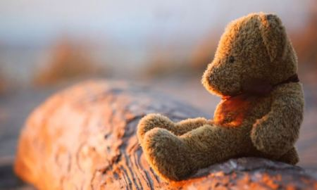 Teddy bear sitting on a log, staring off into the distance.