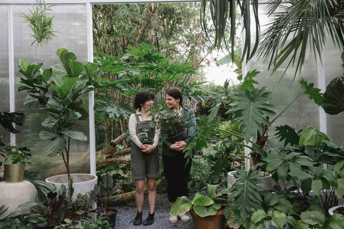 ethnic women with green plants in hothouse