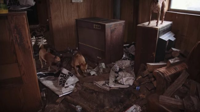 They Walked Into A Seemingly Normal Home, But The Condition They Found It In? Horrible.