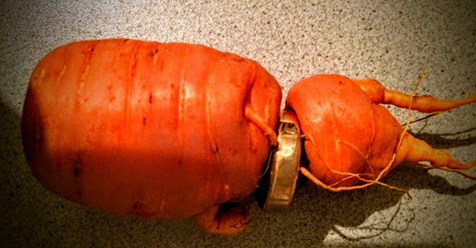 82-Year-Old Man Just Discovered His Lost Wedding Ring In Carrot From His Own Garden