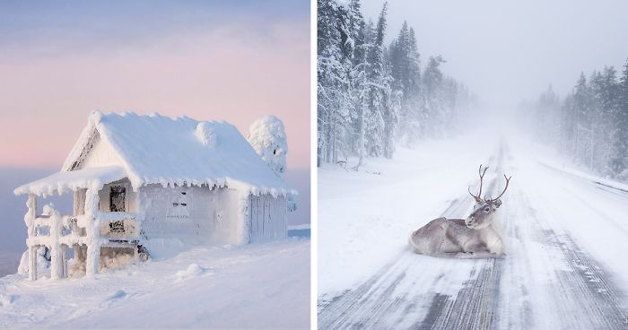 10 Reasons Why Lapland Is The Most Magical Place To Celebrate Christmas