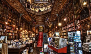 15+ of the Coolest Bookstores to Visit Around the World