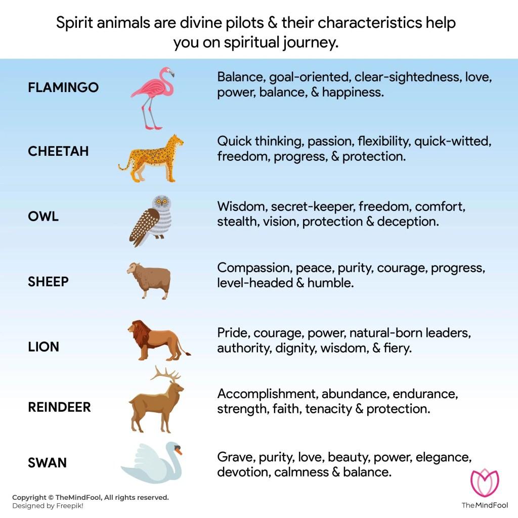 Spirit Animal List -1 Or Animal Symbolism List 1