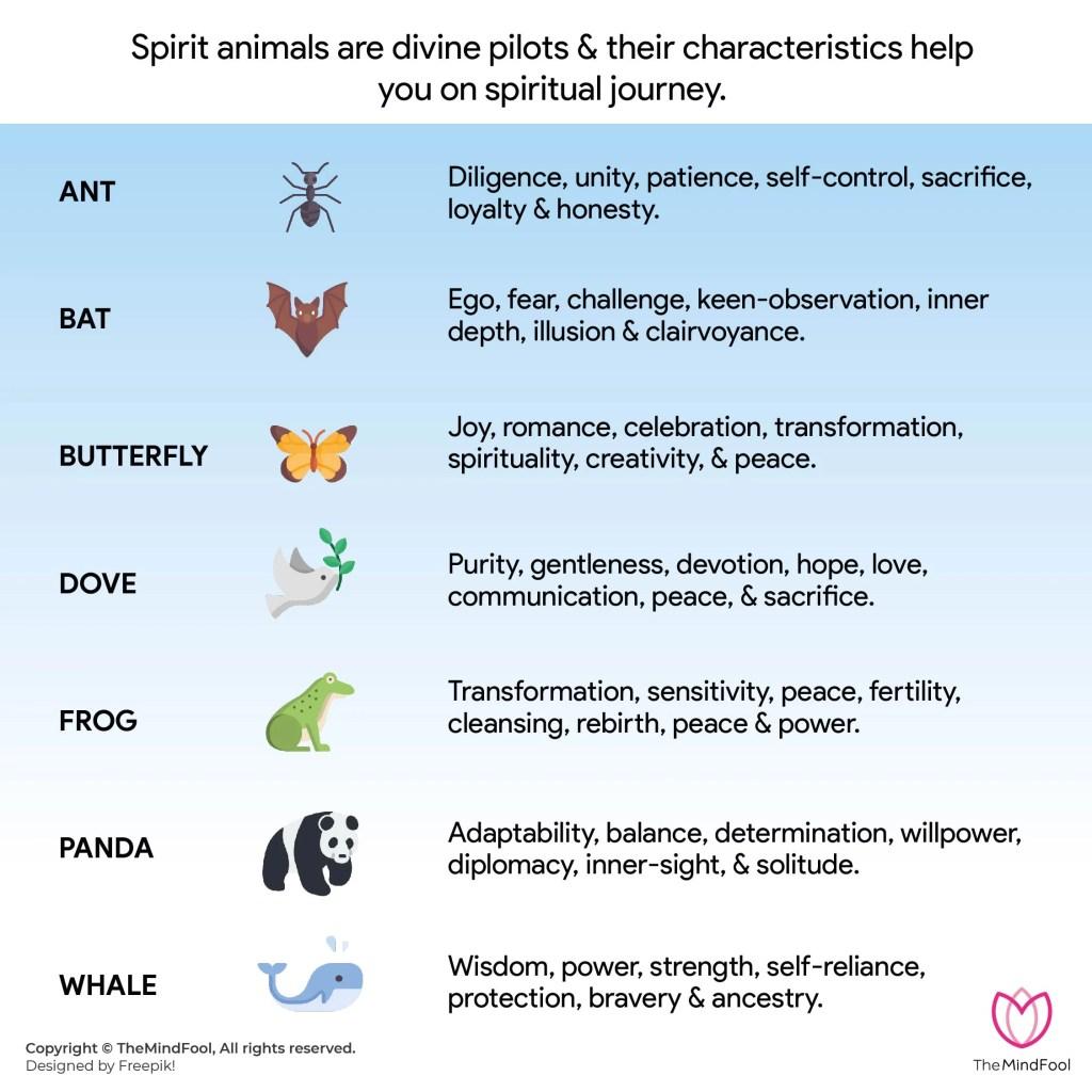 Spirit Animal List 3 Or Animal Symbolism List 3