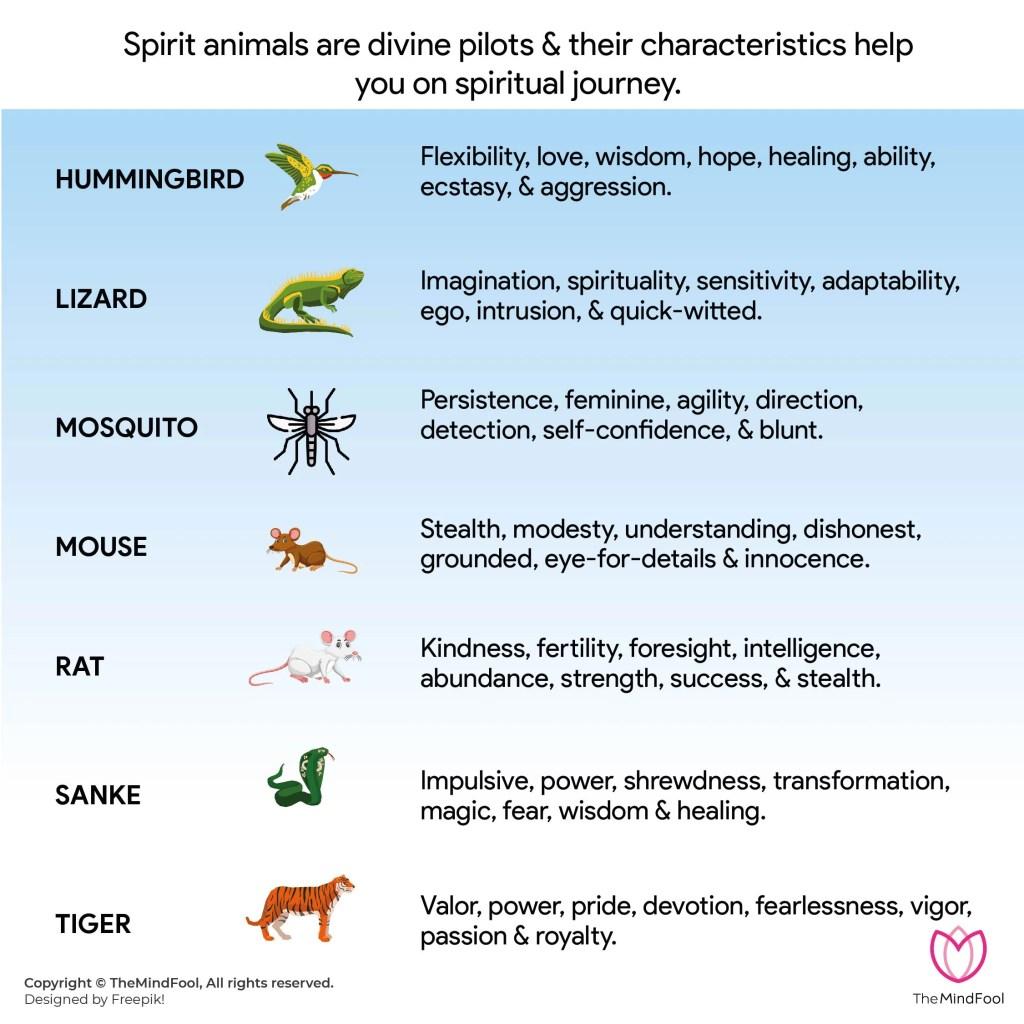 Spirit Animal List 6 Or Animal Symbolism List 6