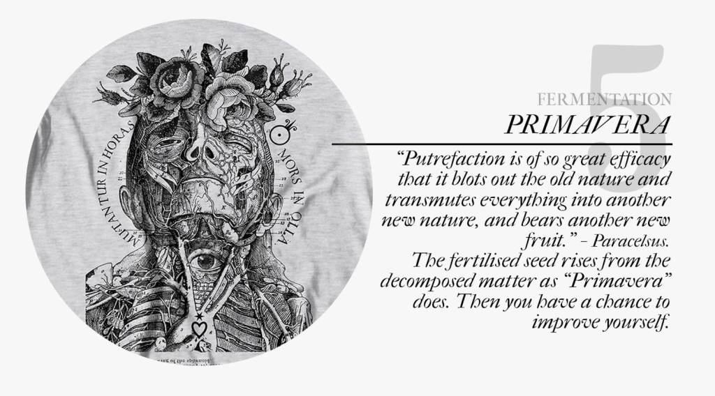 Spiritual alchemy: Fermentation stage