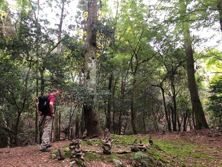 Shinrin Yoku Certification Training in Japan with The Mindful Tourist with a man contemplating on stacked rock art