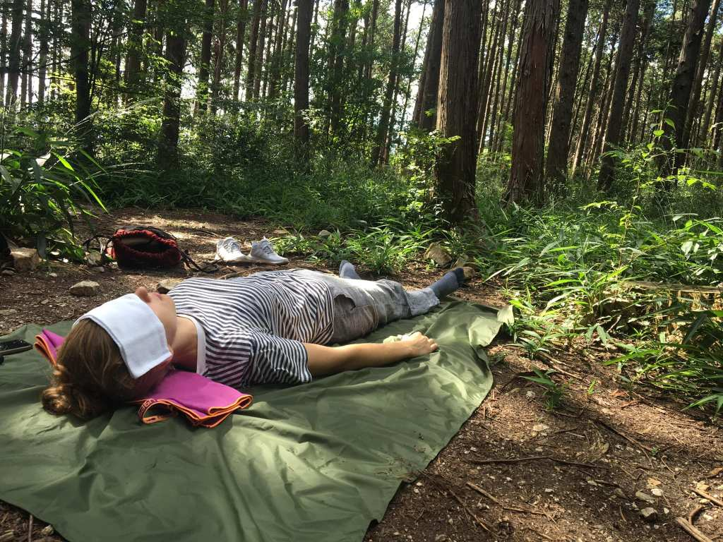 Experience Forest Bathing by lying on the ground enjoying the silence and the sounds of nature