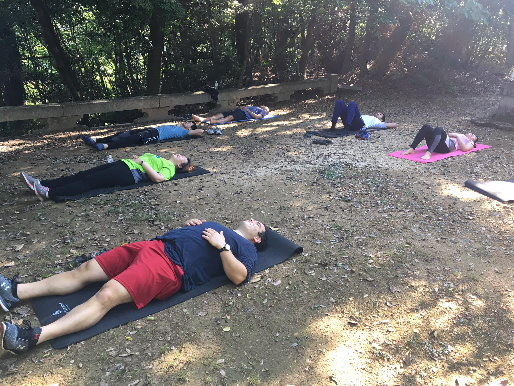 Experience forest bathing with a group of people lying on the ground looking up to the sky