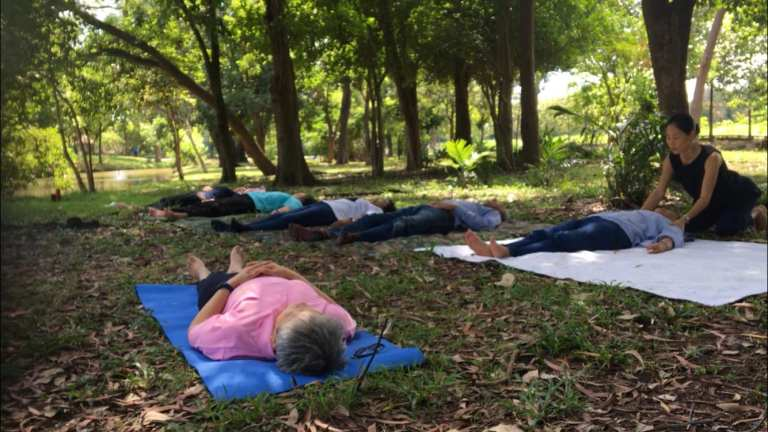 Shinrin Yoku is the new yoga with a group of people lying down on grass under trees