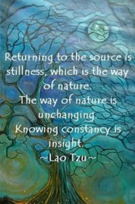return-to-nature-copy