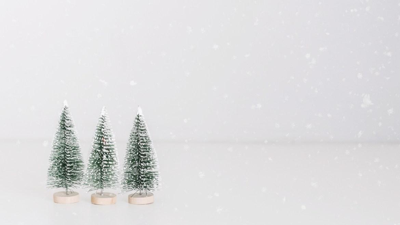 Este Natal Proteja o Planeta