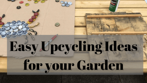 upcycling ideas, easy for your garden