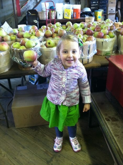The Mint Chip Mama - Apple Picking Cider Donuts at Stuart Farms