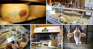 tour gastronomico - parmigiano reggiano - prodotti tipici dell'Emilia Romagna - Parma - The Minutes Fly - Web Magazine