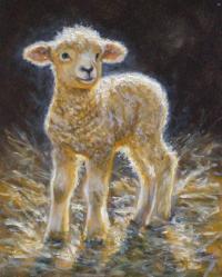 Golden Lamb  Holy Queen Mother