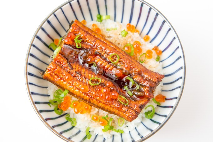 Unagi Don (Eel Rice Bowl) 1 | The Missing Lokness
