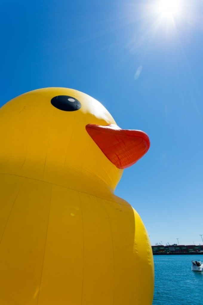 Rubber Duck in Los Angeles 2