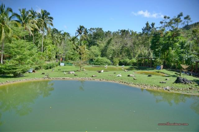 Cebu Safari and Adventure Park - Man-made Lagoon