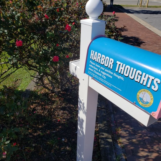harbor thoughts