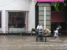 Hand-pulled rickshaws